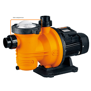 GLONG FCP Series Swimming Pool Pumps