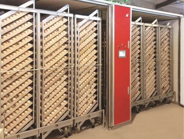 57600 Single-stage incubator